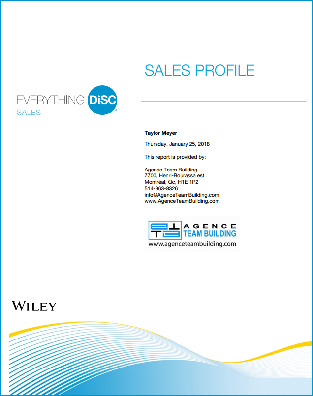 DISC Personality Assessment Sales profile