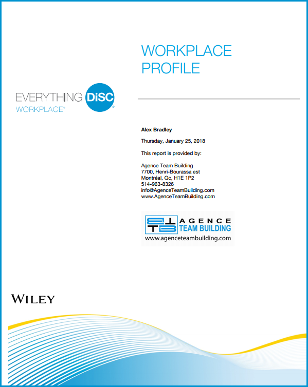 DISC Personality Assessment workplace profile